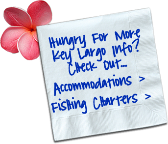 Yum Yum - Hungry For More Key Largo Info?